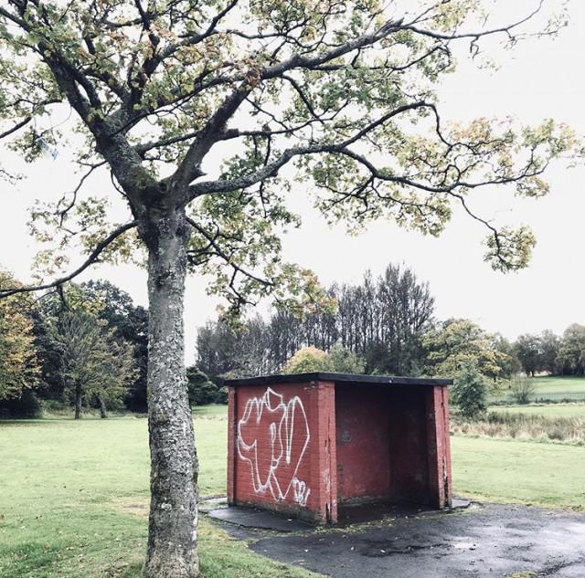 hogganfield2.jpg